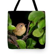 Common Yellowthroat Warbler Tote Bag