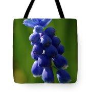 Compact Grape-hyacinth Tote Bag