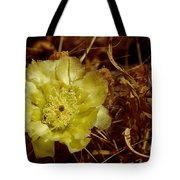 Complementary Colors Tote Bag