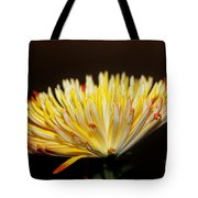 Complexed Tote Bag