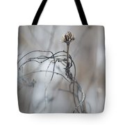 Complicated Means Not Single Tote Bag