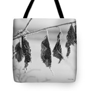 Composedness Tote Bag