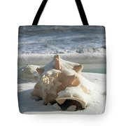 Conch Shell In Snow Tote Bag