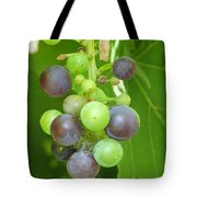 Concord Grapes On The Vine Tote Bag