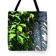 Concrete Green Tote Bag