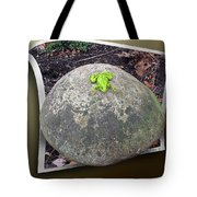 Concrete Toad Stool Tote Bag