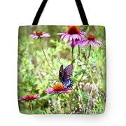 Coneflower Companion Tote Bag