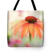 Coneflower 'hot Summer' Tote Bag