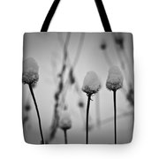 Coneflower Seedheads Covered In Snow Tote Bag