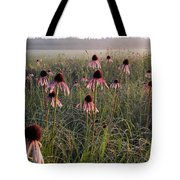 Coneflowers At Dawn Tote Bag