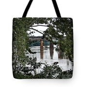 Congaree River Glimpse Tote Bag