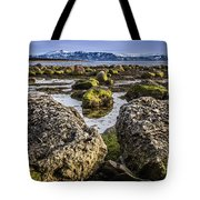 Conglomerate Boulders, Green Point, Nl Tote Bag
