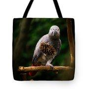 Congo African Grey Parrot Tote Bag