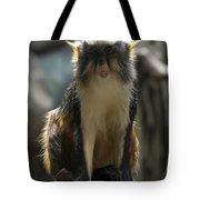 Congo Monkey1 Tote Bag