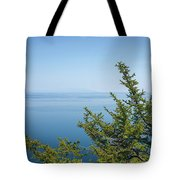 Coniferous Trees On Blue Sky Background Tote Bag by Sergey Taran
