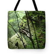 Conkle's Hollow Stone Arch Tote Bag
