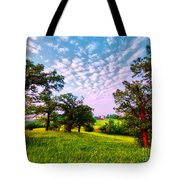 Conley Road Meadow, Oaks, Barn, Spring  Tote Bag