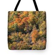 Connecticut Fall Color Tote Bag