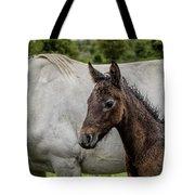 Connemara Foal Tote Bag