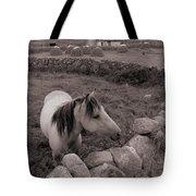 Connemura Horse-signed-#300 Tote Bag