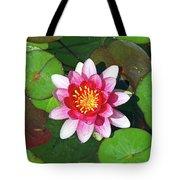 Conqueror Waterlily  Tote Bag