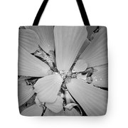 Conservatory Nature In Black And White 1 Tote Bag