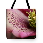 Conservatory Proprietor Tote Bag