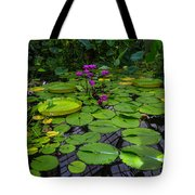 Conservatory Waterlilies Tote Bag