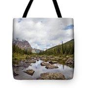 Consolation Lake Banff Tote Bag