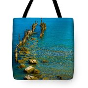 Constance Lake Landscape Tote Bag