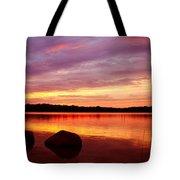 Constant Stimulus Tote Bag