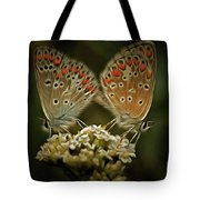 Contact - Detail Of The Butterflies Tote Bag