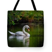 Contemplating Swan Tote Bag