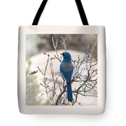 Contemplating The Winter To Come Tote Bag
