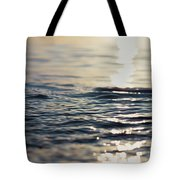 Contemplation 2 Tote Bag