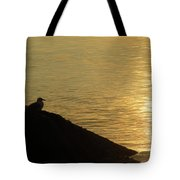 Contemplation II Tote Bag