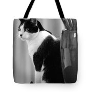 Contemplative Cat Black And White Tote Bag