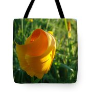 Contemporary Orange Poppy Flower Unfolding In Sunlight 10 Baslee Troutman Tote Bag