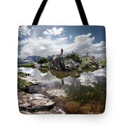 Continental Divide Above Twin Lakes 5 - Weminuche Wilderness Tote Bag
