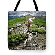Continental Divide Above Twin Lakes 7 - Weminuche Wilderness Tote Bag