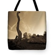 Contrails And Driftwood Tote Bag