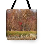 Contrasting Colors Tote Bag