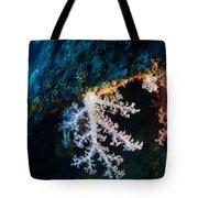 Contrasting Coral Tote Bag
