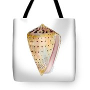 Conus Leopardus Shell Tote Bag by Amy Kirkpatrick