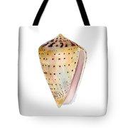 Conus Leopardus Shell Tote Bag