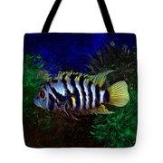 Convict Cichlid Fish Tote Bag