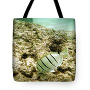 Convict Tang Tote Bag