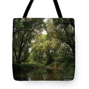 Cook County Forest Preserve No 6 Tote Bag