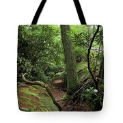 Cook Forest Tote Bag