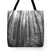 Cook Pines Tote Bag